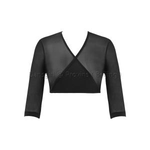 Long Sleeve Crop Mesh Dance Top